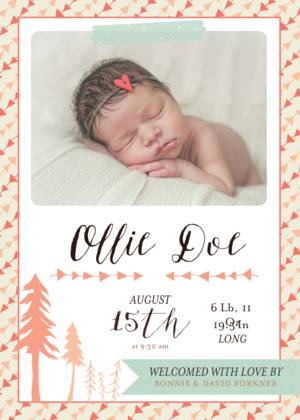 Baby Announcements by Bonnie Christine