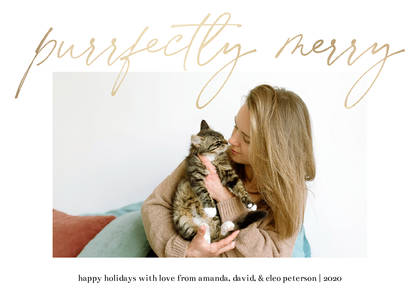 Purrfectly Merry Cat Pet Holiday