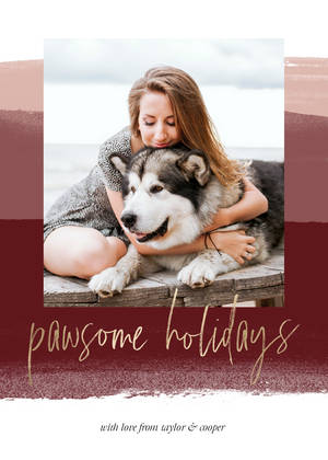 Pawsome Dog Pet Holidays