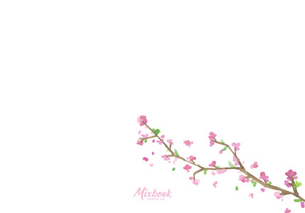 Cherry Blossoms Reception Card