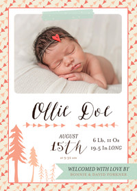 Baby Announcements by Bonnie Christine (Girl)