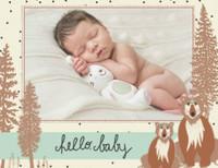 Woodland Baby Boy by Bonnie Christine
