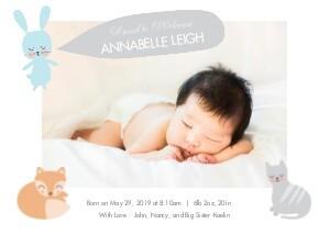 Baby Animal Illustrations