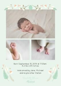 Baby Nest by Elizabeth Olwen