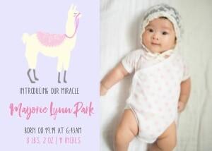 Llama Baby Announcement